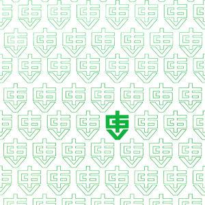 Первый логотип IGV